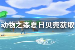 《集合啦动物森友会》夏天贝壳怎么获得 夏天贝壳获取方法介绍