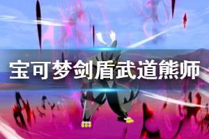《宝可梦剑盾》武道熊师技能招式哪些?武道熊师资料图鉴介绍