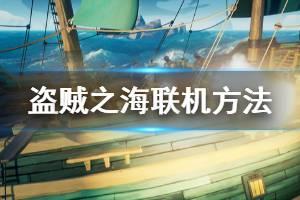 《盗贼之海》怎么联机 游戏联机方法分享