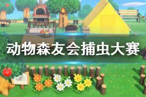 《集合啦动物森友会》捕虫大赛怎么玩 捕虫大赛玩法技巧介绍