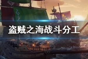 《盗贼之海》战斗怎么分工 战斗人员分工位置介绍
