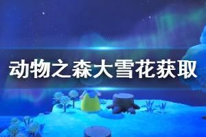《集合啦动物森友会》大雪花怎么获得 大雪花获取方法介绍
