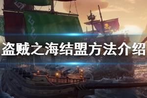 《盗贼之海》怎么结盟 联机结盟方法介绍