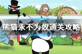 《熊猫永不为奴》全关卡流程一览 全关卡通关攻略