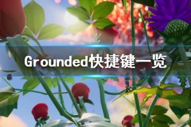 《Grounded》快捷键有哪些 快捷键一览