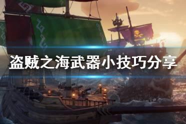《盗贼之海》有什么武器技巧 新手武器小技巧分享