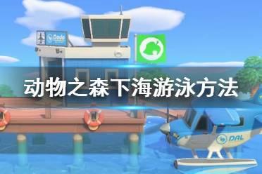 《集合啦动物森友会》怎么下海 下海游泳方法介绍