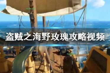 《盗贼之海》野玫瑰攻略视频合集 野玫瑰任务怎么完成?