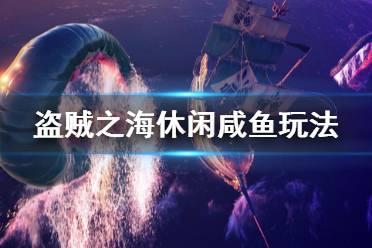 《盗贼之海》休闲玩家怎么玩 休闲咸鱼玩法分享