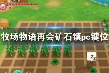 《牧场物语再会矿石镇》pc键位操作一览 pc版怎么操作?