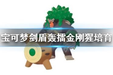 《宝可梦剑盾》对战最强宝可梦是哪个 轰擂金刚猩培育方法