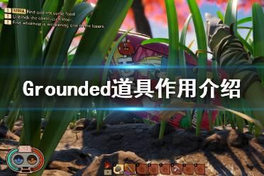 《禁闭求生》道具有哪些?Grounded道具作用介绍
