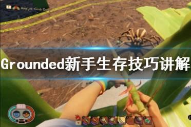 《禁闭求生》新手攻略视频合集 Grounded新手生存技巧讲解