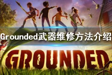 《禁闭求生》武器怎么维修 Grounded武器维修方法介绍