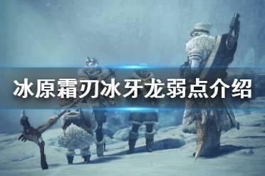 《怪物猎人世界冰原》霜刃冰牙龙弱什么 霜刃冰牙龙弱点介绍