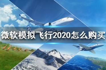 《微软模拟飞行2020》怎么购买?购买方法介绍