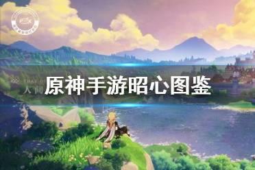 《原神手游》昭心图鉴一览 昭心图文介绍