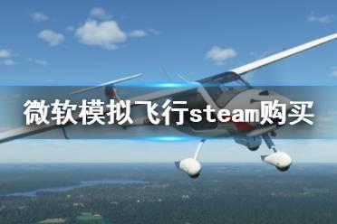《微软模拟飞行2020》steam叫什么 steam购买方法介绍