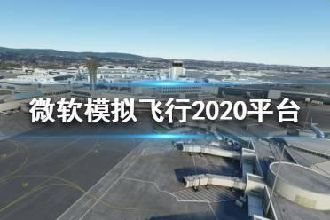 《微软模拟飞行2020》在哪个平台?平台介绍