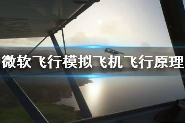 《微软飞行模拟》飞行原理是什么 飞机飞行原理介绍