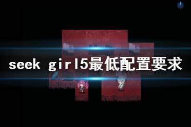 《seek girl v》配置要求高吗 游戏最低配置要求一览