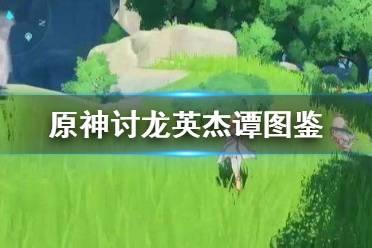 《原神手游》讨龙英杰谭图鉴分享 讨龙英杰谭怎么样