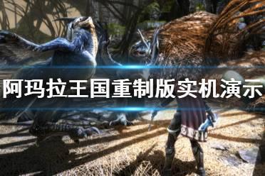 《阿玛拉王国惩罚重制版》画面怎么样 游戏实机演示视频分享