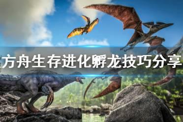 《方舟生存进化》孵龙有什么技巧 孵龙技巧分享