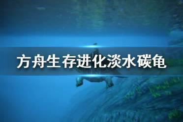《方舟生存进化》淡水碳龟有什么用?淡水碳龟解析