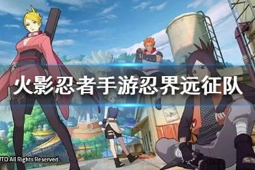 《火影忍者OL》忍界远征队怎么玩 忍界远征队玩法攻略