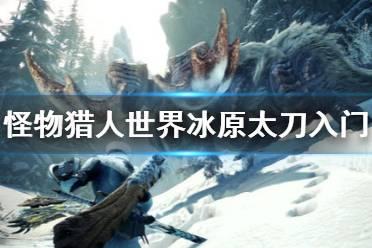 《怪物猎人世界冰原》太刀怎么入门 新手太刀入门指南