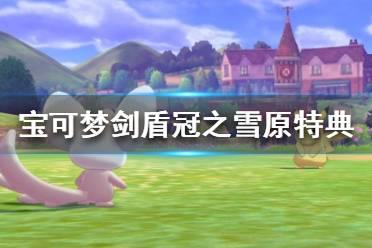 《宝可梦剑盾》冠之雪原特典是什么?冠之雪原特典介绍