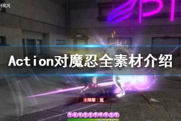 《Action对魔忍》素材有哪些 游戏全素材介绍