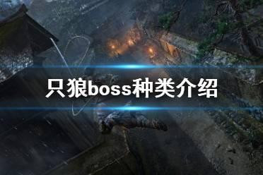 《只狼影逝二度》boss种类有哪些?boss种类介绍