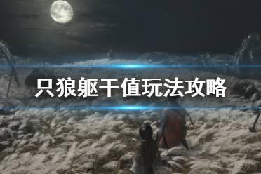 《只狼影逝二度》躯干值满了会怎么样?躯干值玩法攻略