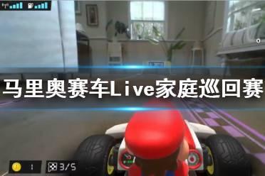 《马里奥赛车Live家庭巡回赛》好玩吗 玩法特色简介