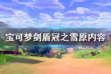 《宝可梦剑盾》冠之雪原内容有什么 冠之雪原内容介绍