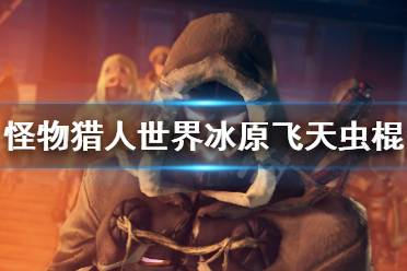 《怪物猎人世界冰原》飞天虫棍怎么配 飞天虫棍配装介绍