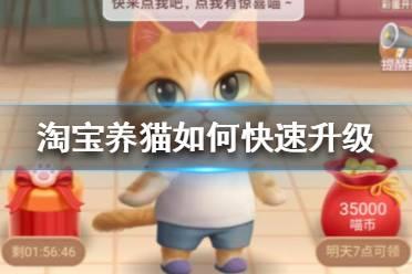 淘宝养猫如何快速升级 淘宝养猫快速升级方法