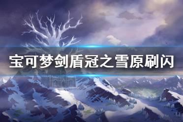 《宝可梦剑盾》冠之雪原怎么刷闪 极巨大冒险神兽刷闪方法