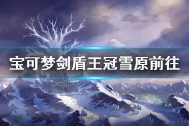 《宝可梦剑盾》冠之雪原怎么去 王冠雪原前往方法