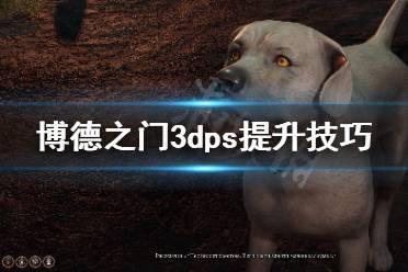 《博德之门3》dps怎么提升 dps提升技巧