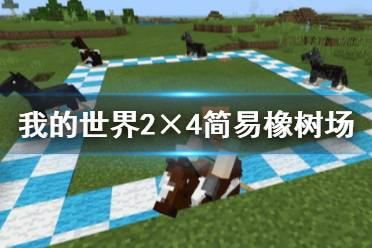 《我的世界》2×4简易橡树场制作演示视频