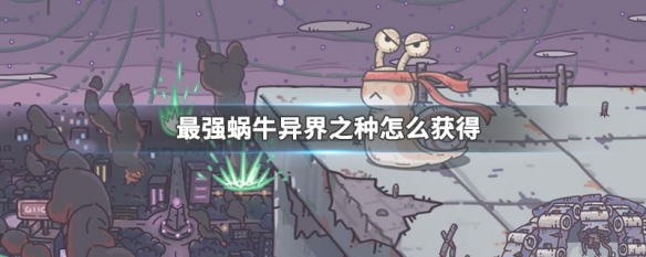 http://anhua.bjqh88.com/news/612.html