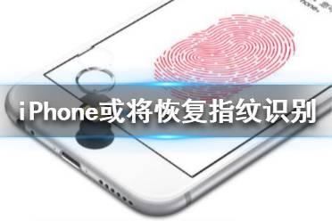 iPhone或将恢复指纹识别 iPhone或将重新使用Touch ID