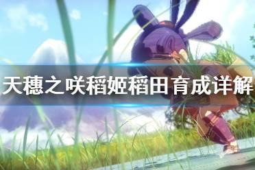 《天穗之咲稻姬》怎么种水稻 稻田育成详解