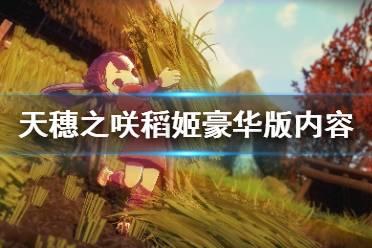 《天穗之咲稻姬》豪华版内容有什么 豪华版内容一览