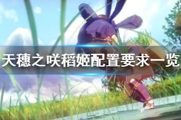 《天穗之咲稻姬》最低配置要求是什么 配置要求一览