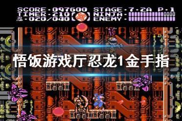 悟饭游戏厅忍者龙剑传1金手指代码大全 忍者龙剑传1金手指怎么用