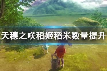 《天穗之咲稻姬》稻米数量怎么提升 稻米数量提升技巧
